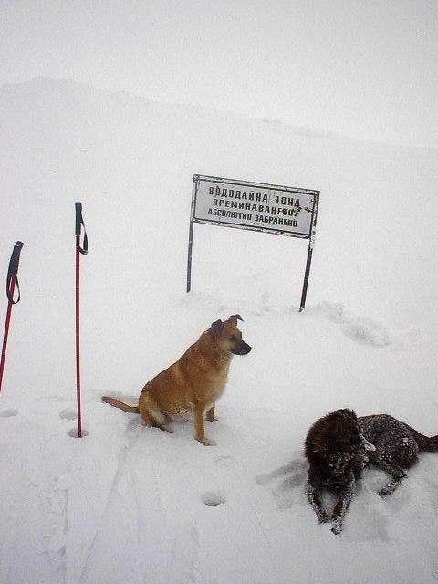 ski companions near cherni vhruh