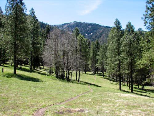 South Fork Rio Bonito Trail