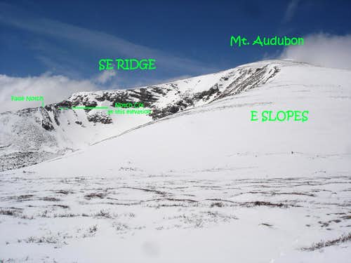 Audubon\'s SE ridge upper from E slopes.