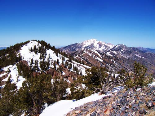 Deseret Peak from Vickory Mountain