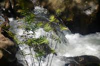 Waterfall (Río de la Miel)