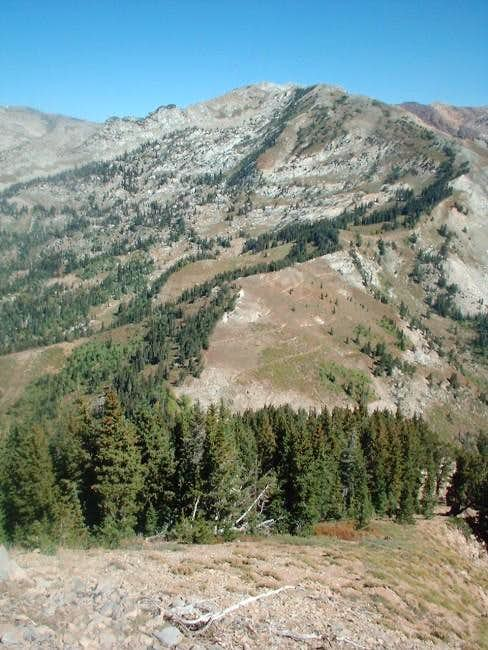 From along the upper ridge...