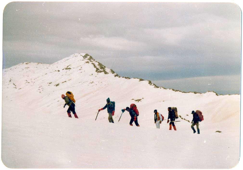 Ronj - Winter
