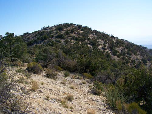 Mountain Springs Peak
