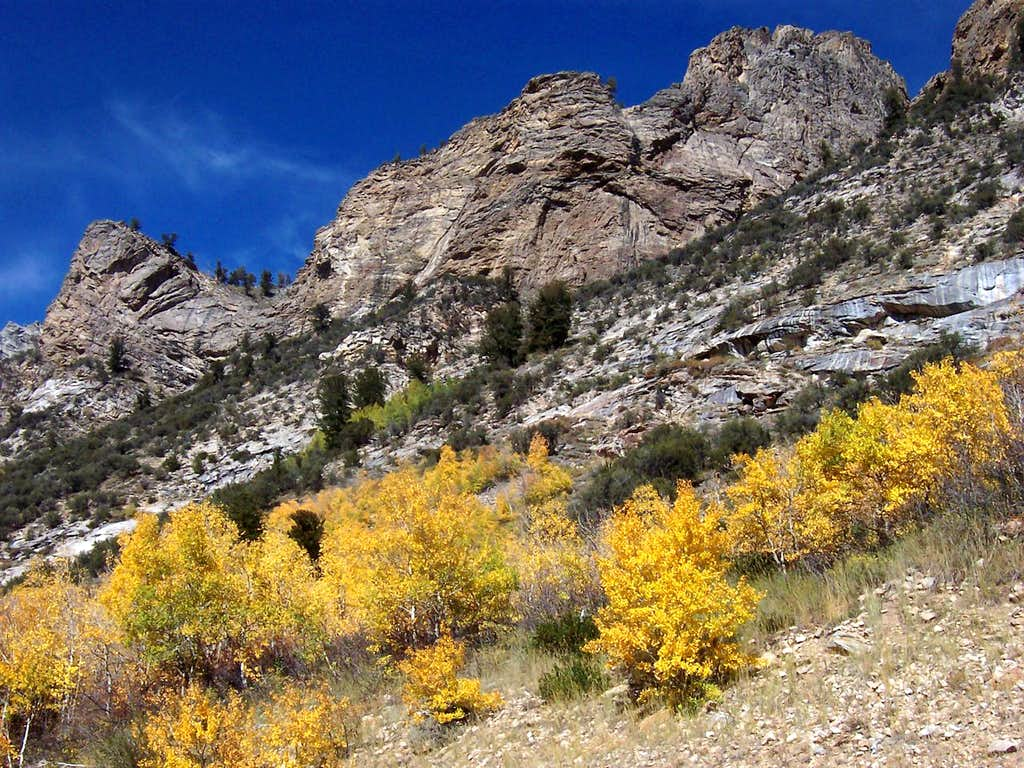 Ruby Mountains