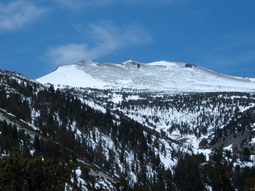 View of Mount Rose from the summit