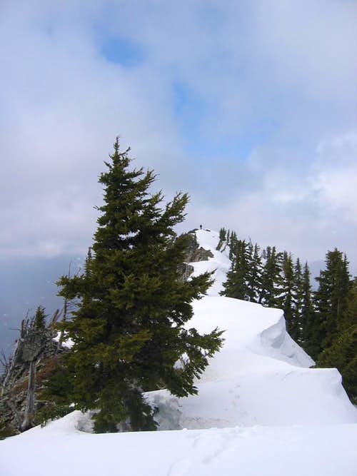 Red Mtn\'s North Summit
