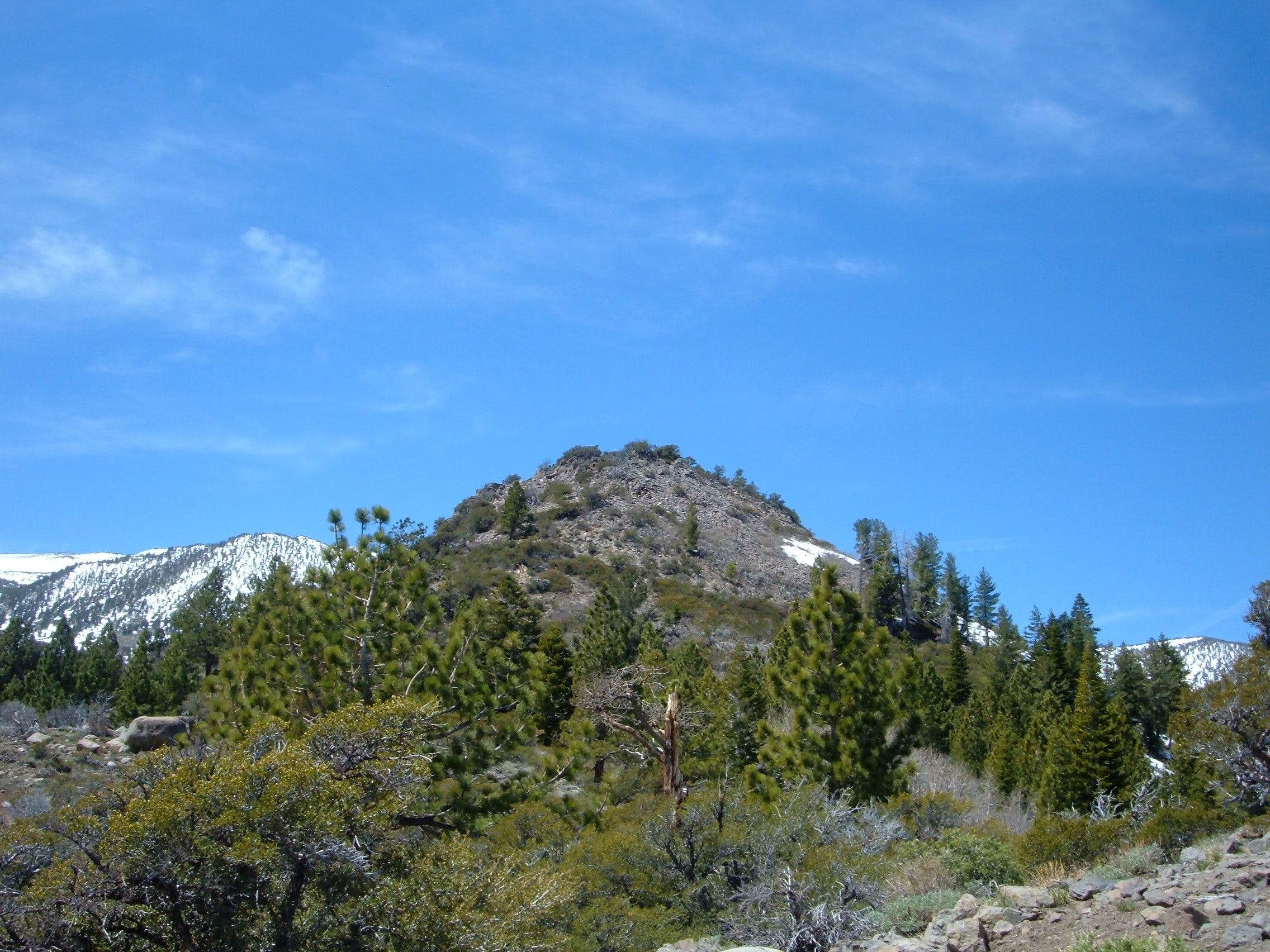 Point 8364 - Mount Rose Wilderness - Nevada