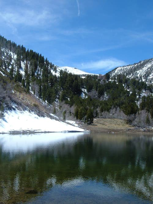 View from Church\'s pond up to Mount Rose