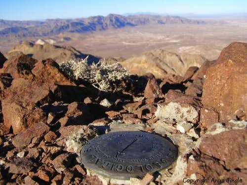 Summit Survey Marker