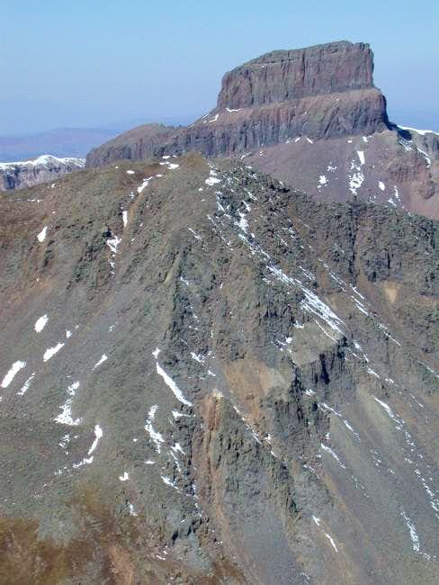 Coxcomb from Matterhorn 25...