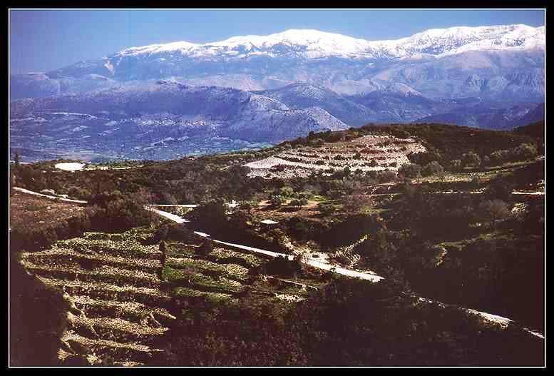 Perganti from Lefkada