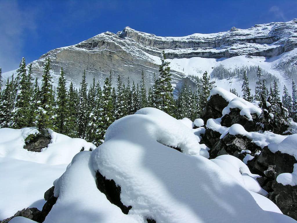 Mount McGillivray