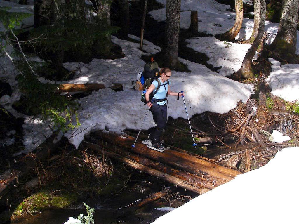 Snowshoe Creek Crossing