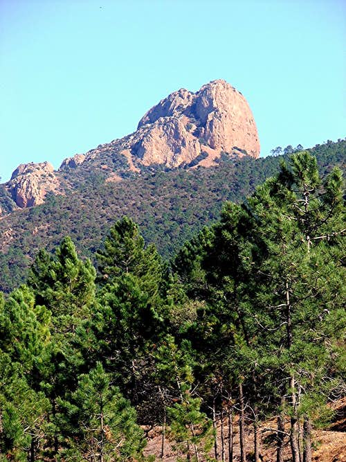 Le-St-Pilon in the Esterel