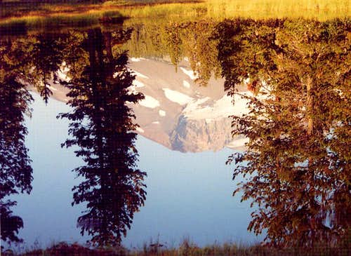 Upon Reflection:  South Sister in the Early Morning from Park Meadow