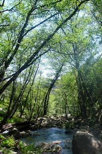 Río de la Miel in the afternoon