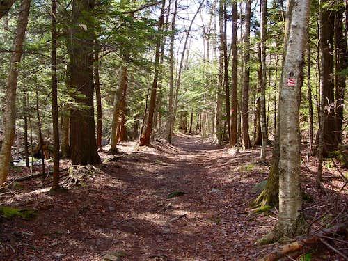 Black Dome Range Trail