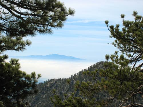 Twin Peaks (east summit), San Gabriel Mtns.