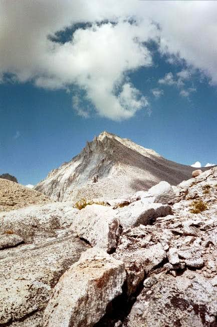 Mount Brewer