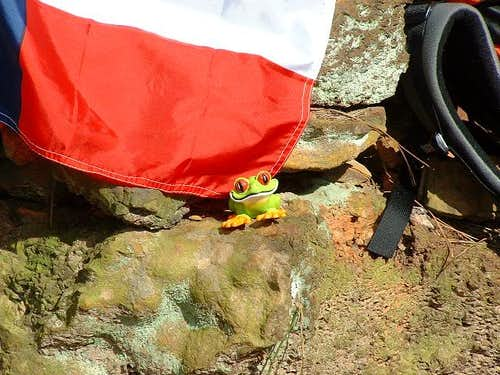 Jacko the Frog on Louisiana\'s...