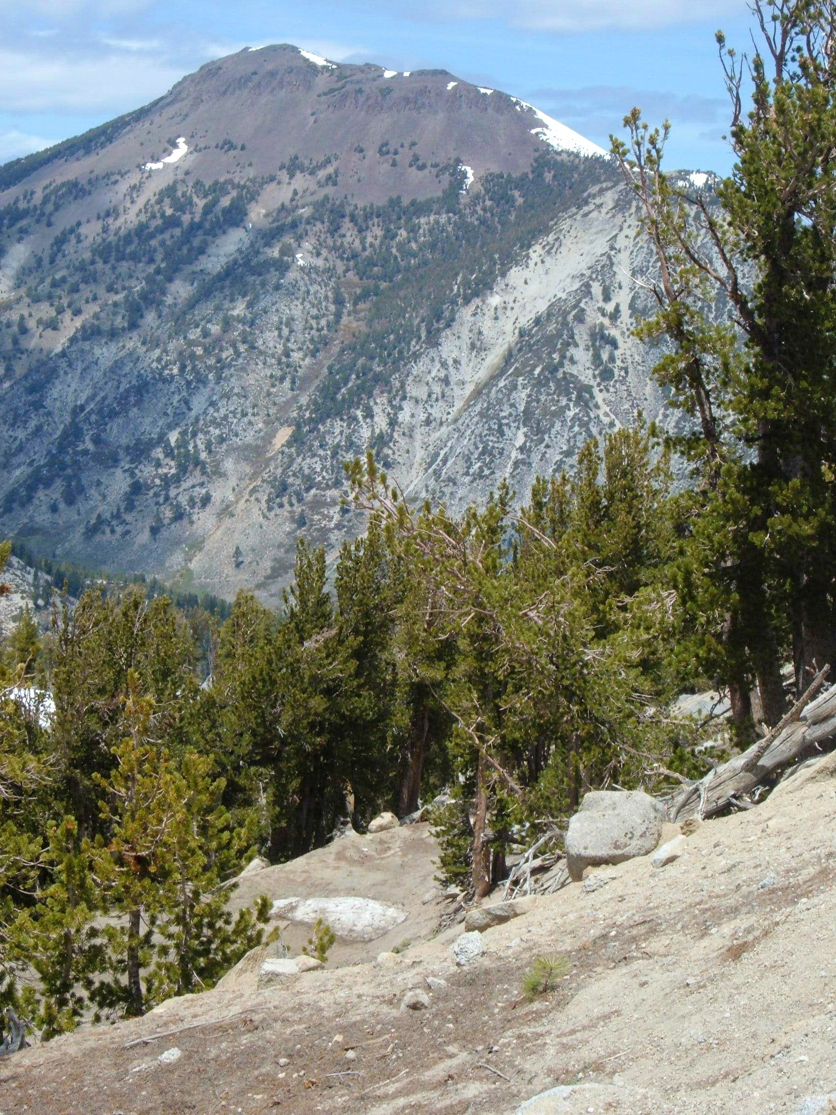 Mount Rose Wilderness
