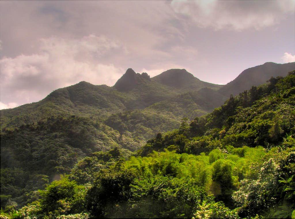 Pico El Yunque