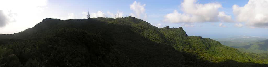 El Yunque summit area.