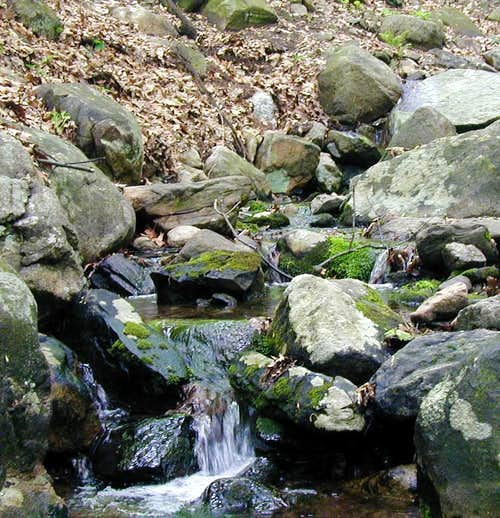 Stream on the North side of Sugarloaf