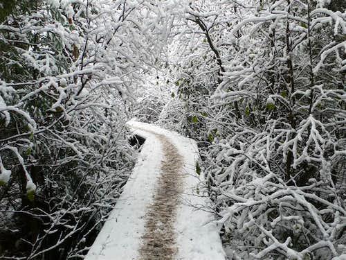 Van Hoevenberg Trail