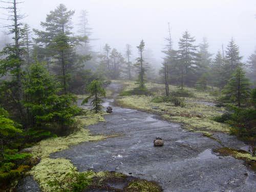 Mahoosuc Range