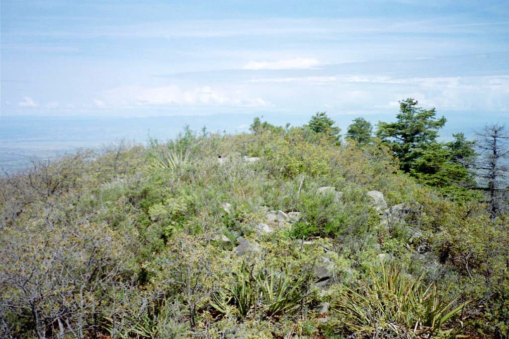 Placer Mountain