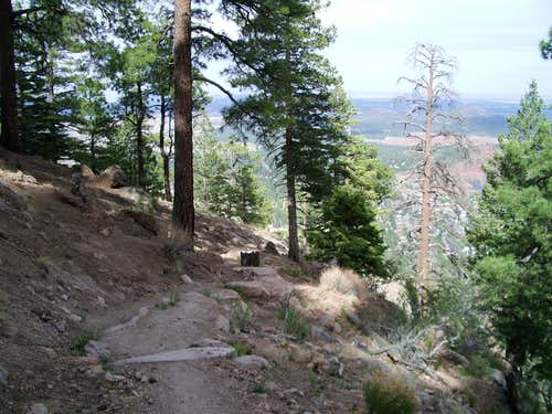 On the Mt. Elden Trail