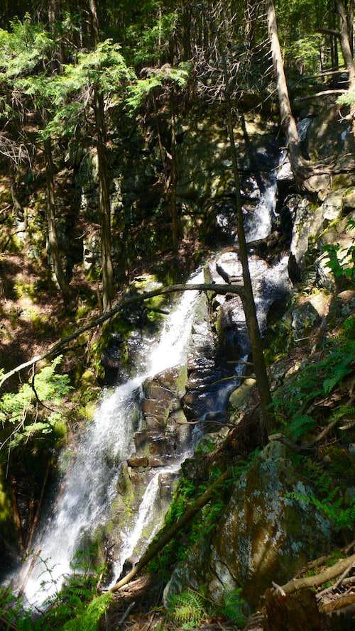 The Mossy Cascade
