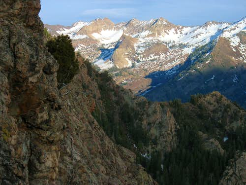 Lake Blanche basin from Mt. Olympus