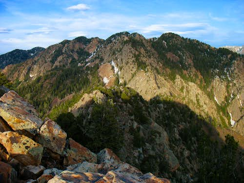 Wildcat Ridge from Mt. Olympus summit