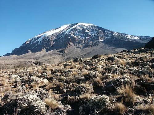 Kilimanjaro with Heim and...