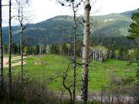 Beatty's Trail