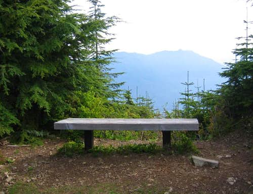View bench near the top