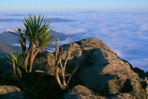 View from Pico de Catas Altas
