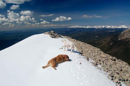 The summit of East Spanish Peak