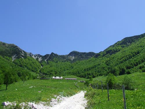 On planina ( mountain pasture ) ...