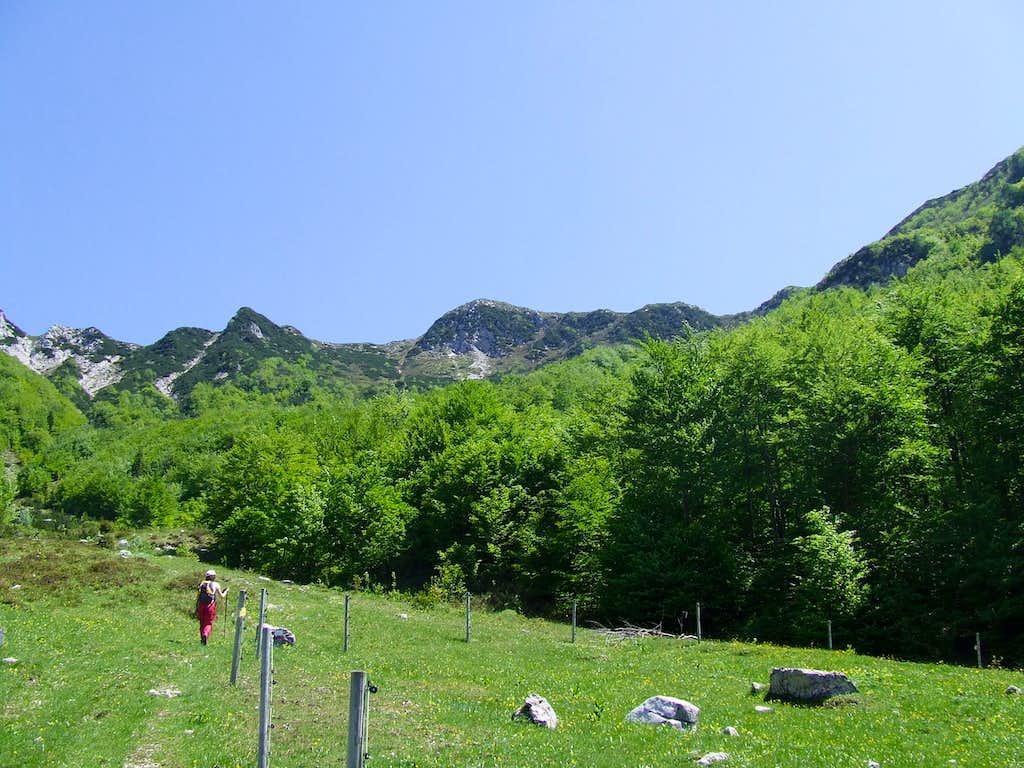 Above planina ( mountain pasture ) ...