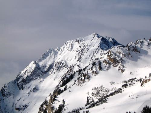 Mt Superior from Grizzly Gulch