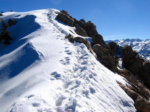 Mt Olympus summit ridge