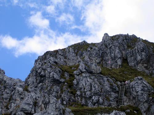 Exposed ladder near to the summit