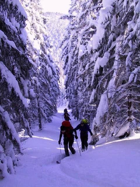 Unterberg - ski ascent