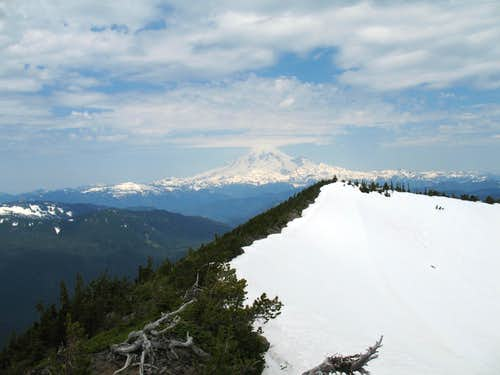 Rainier from the top of Hogback Mtn