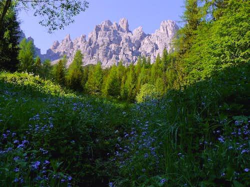 Spring in Val di Giàf