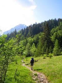 Trail to Steinkaralm